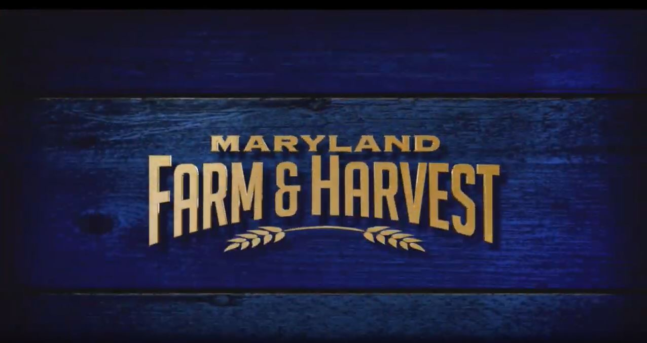 Featured on Maryland Farm & Harvest